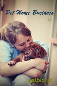 Pet Home Business