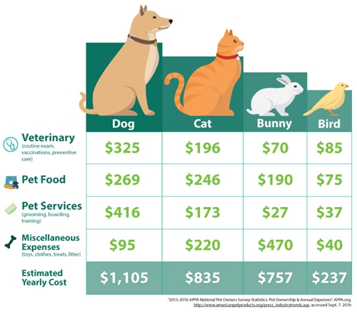 10 Tips to Reduce Pet Care Costs